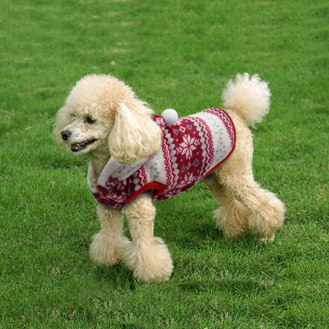 Christmas Winter Coat for Puppies and Cats