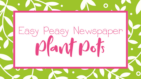 Newspaper Plant Pot