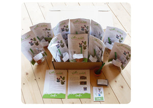 10 x GYO Cactus Party Bags