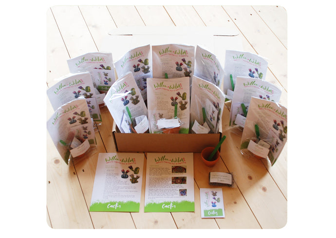 12 x GYO Cactus Party Bags