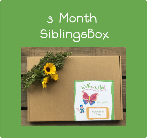 Siblings LetterBox ~ £44.85 for 3 months ~ £14.95 per Month