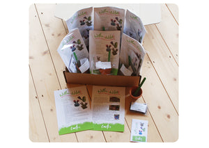 6 x GYO Cactus Party Bags
