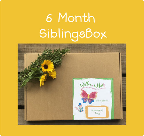 Siblings LetterBox ~ £83.70 for 6 months ~ £13.95 per month