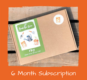 6 month Subscription - £49.50 for 6 months, £8.25 per month