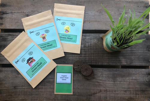 Grow your own Wheat Grass Head in a Bag