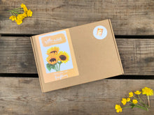 Grow Your Own Sunflower Kit