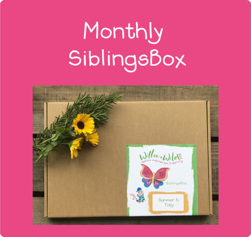 Siblings Monthly LetterBox ~ £15.95 per Month