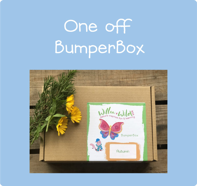 One-Off Bumper Box