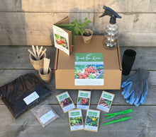 Grow your own Veggies Kit