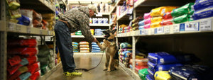 man with dog in food aisle