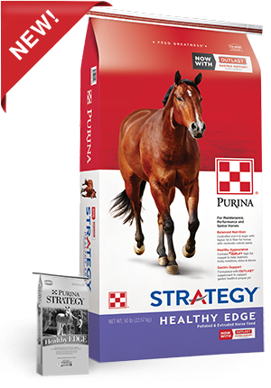 purina-strategy-healthy-edge