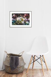 Flower Poster #203 - Print Art - Exclusive Posters and Prints Online