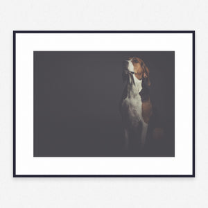 Dog Poster #214 - Print Art - Exclusive Posters and Prints Online