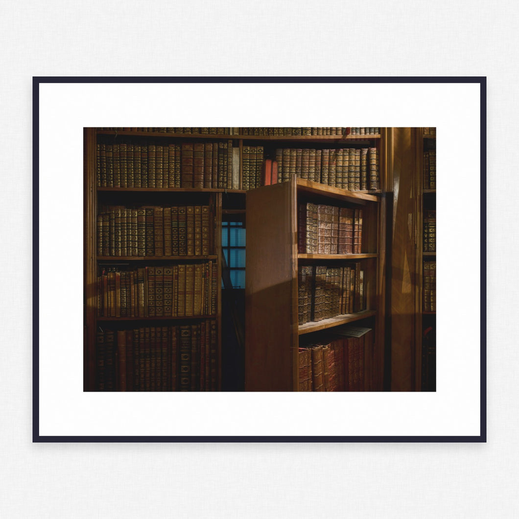 Library Poster #232