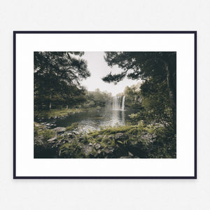 Tree Poster #414 - Print Art - Exclusive Posters and Prints Online