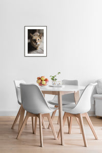 Cat Poster #423 - Print Art - Exclusive Posters and Prints Online
