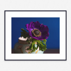 Flower Poster #713 - Print Art - Exclusive Posters and Prints Online