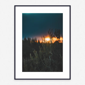 Outdoor Poster #836 - Print Art - Exclusive Posters and Prints Online