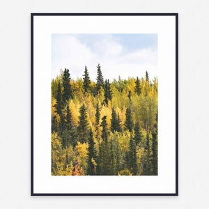 Tree Poster #1116 - Print Art - Exclusive Posters and Prints Online