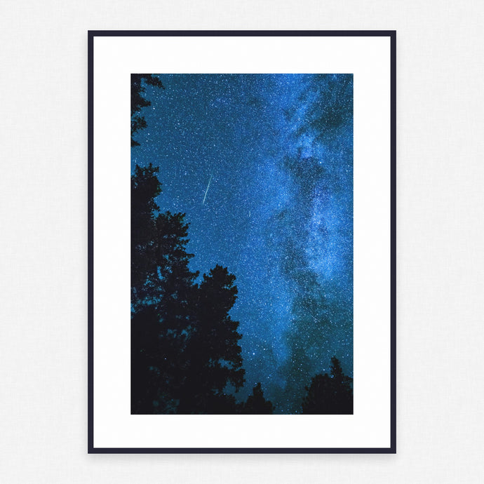 Tree Poster #1123 - Print Art - Exclusive Posters and Prints Online