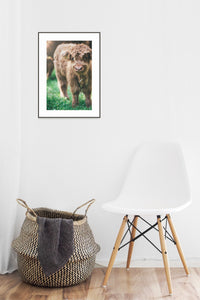 Grass Poster #1136 - Print Art - Exclusive Posters and Prints Online