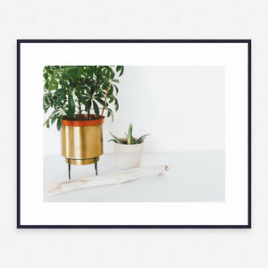 Plant Poster #1219 - Print Art - Exclusive Posters and Prints Online