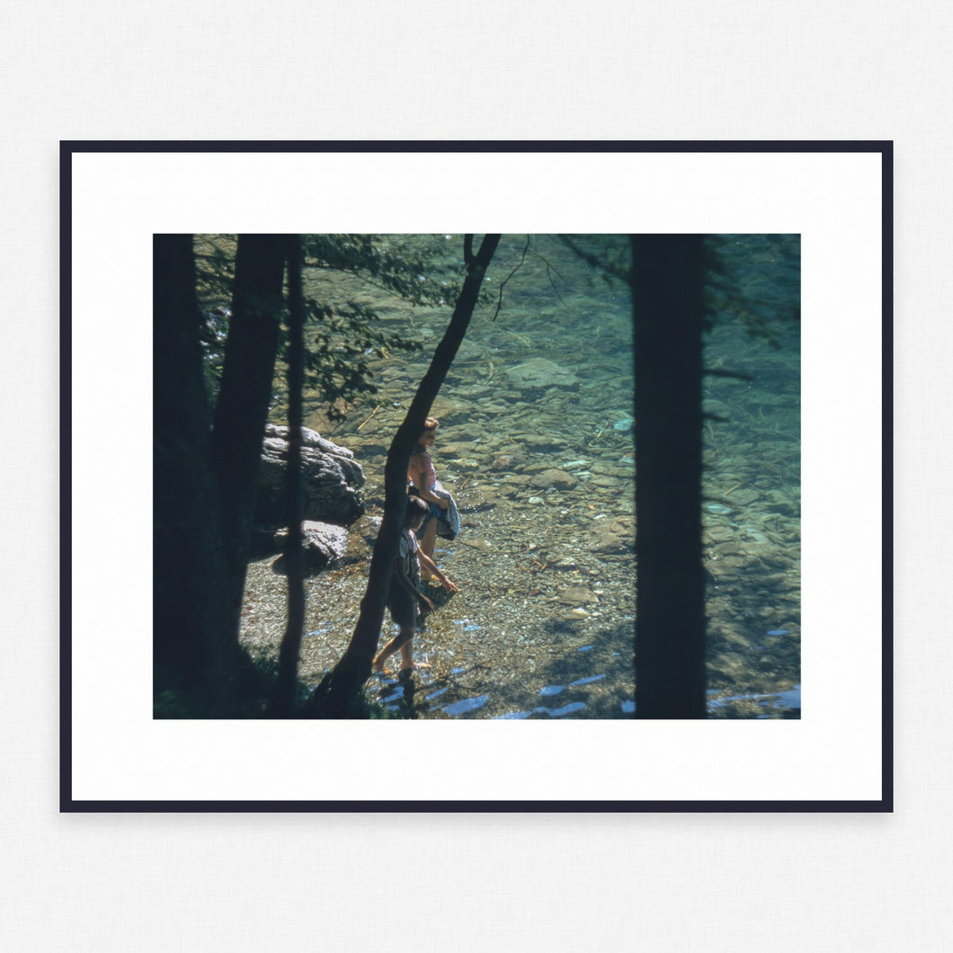 Tree Poster #1338 - Print Art - Exclusive Posters and Prints Online