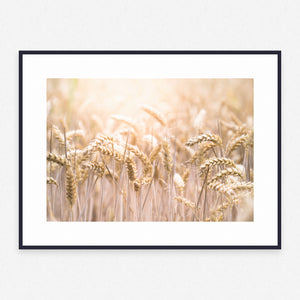 Grass Poster #1351 - Print Art - Exclusive Posters and Prints Online