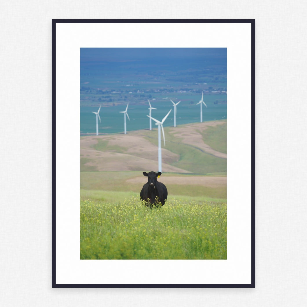 Grass Poster #1637 - Print Art - Exclusive Posters and Prints Online