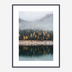 Nature Poster #1650 - Print Art - Exclusive Posters and Prints Online
