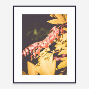 Plant Poster #1754 - Print Art - Exclusive Posters and Prints Online