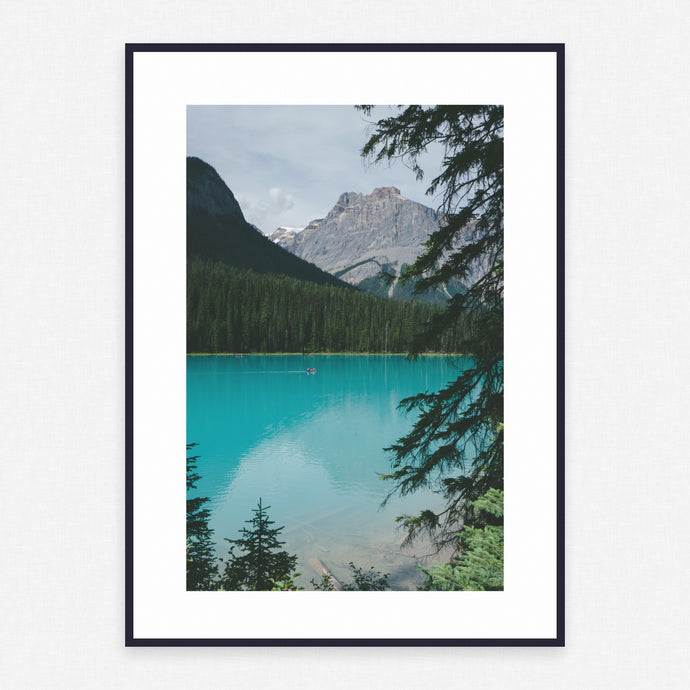 Tree Poster #3676 - Print Art - Exclusive Posters and Prints Online