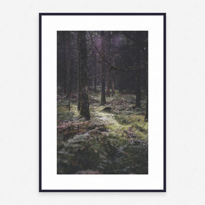 Tree Poster #3818 - Print Art - Exclusive Posters and Prints Online