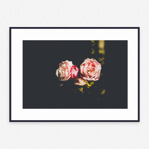 Flower Poster #3849 - Print Art - Exclusive Posters and Prints Online