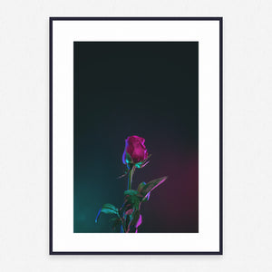 Flower Poster #3950 - Print Art - Exclusive Posters and Prints Online
