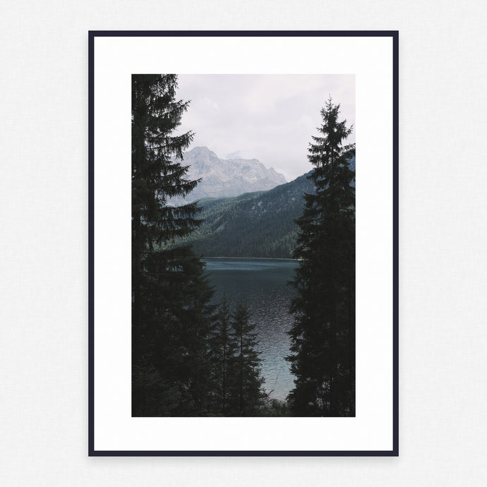 Tree Poster #4012 - Print Art - Exclusive Posters and Prints Online