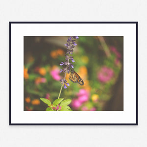 Flower Poster #4375 - Print Art - Exclusive Posters and Prints Online