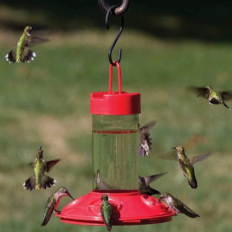 the clean hummingbird feeder hanging from a hook outside with a grassy background and with multiple hummingbirds flying around it or sitting at it resting and eating