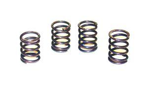 TBR HD Clutch Springs for CRF50/70