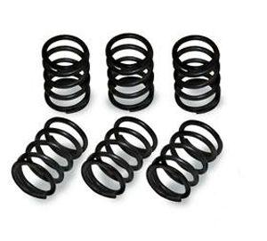 BBR 110 HD Clutch Springs