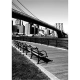 Brooklyn Benches