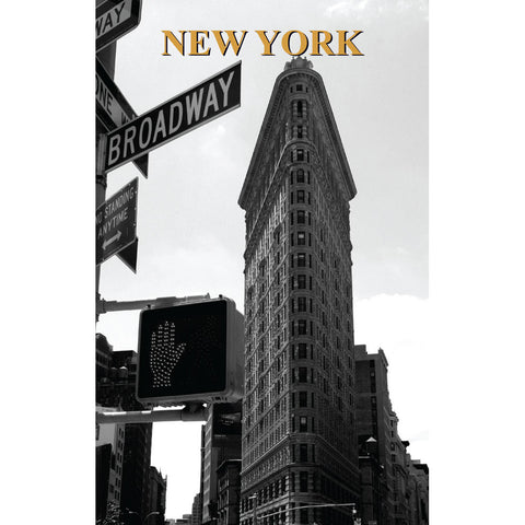 Flatiron And Broadway - Large Notebook