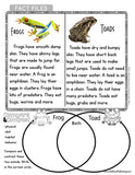 Non-Fiction Guided Reading & Comprehension
