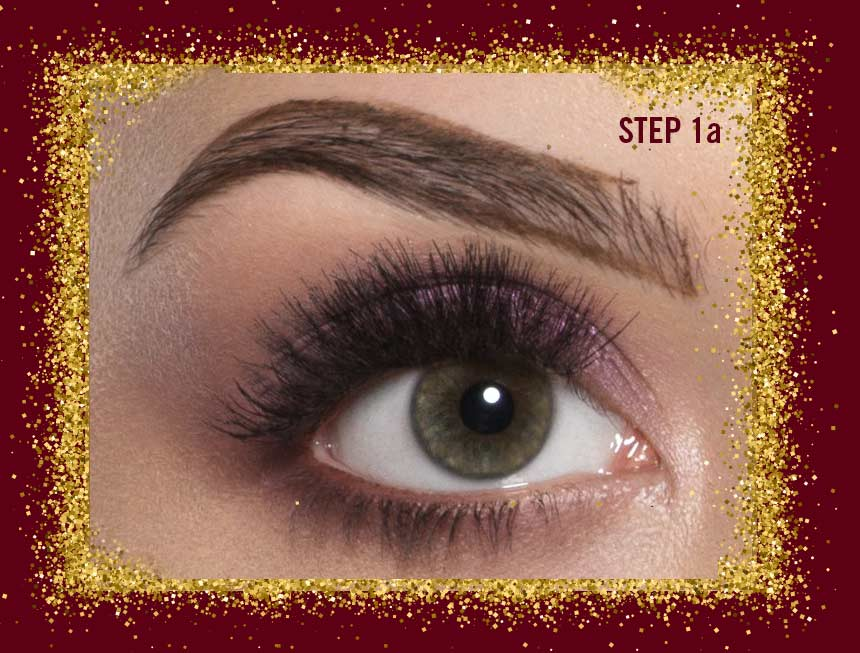 Sexy Eyebrows Step 1A