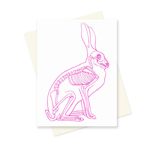 Pink Bunny Anatomy. A6 Card