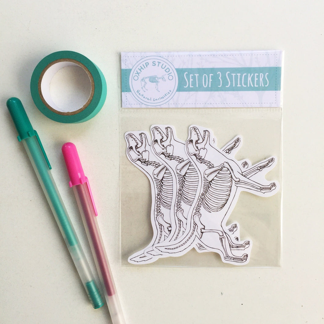 Dog Anatomy Sticker Set.
