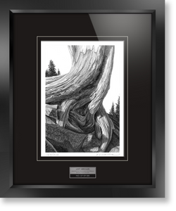 "Framed limited edition print of original Doug Fluckiger drawing ""Lost Hercules"""