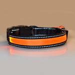 Happy Dog Coaching - Solar LED Dog Collar