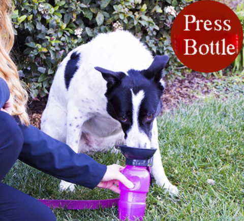 H2o Portable Dog Water Bottle Outdoor