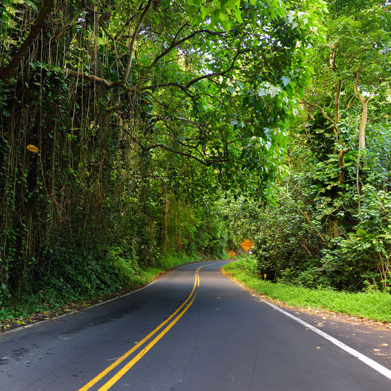 Hana Highway Maui Hawaii